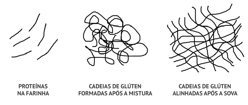 Sovar massa de pão - Formação do glúten