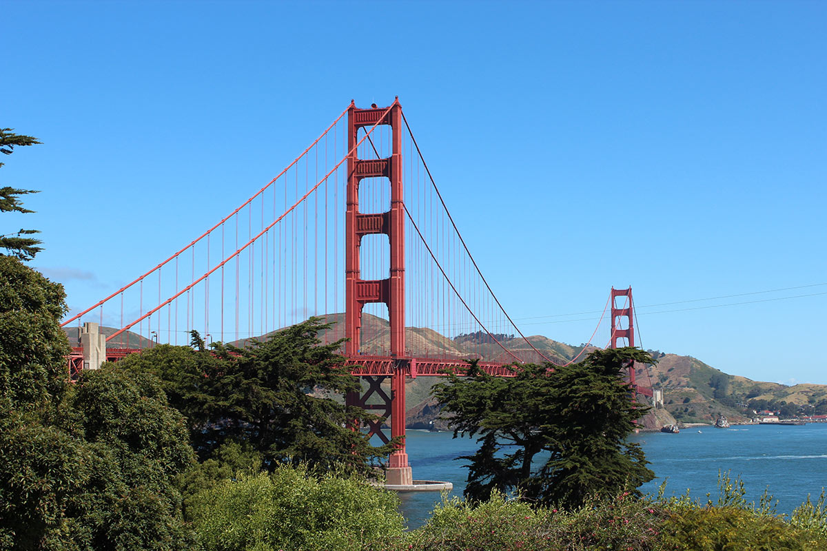 Um tour em San Francisco para descobrir o melhor pão sourdough