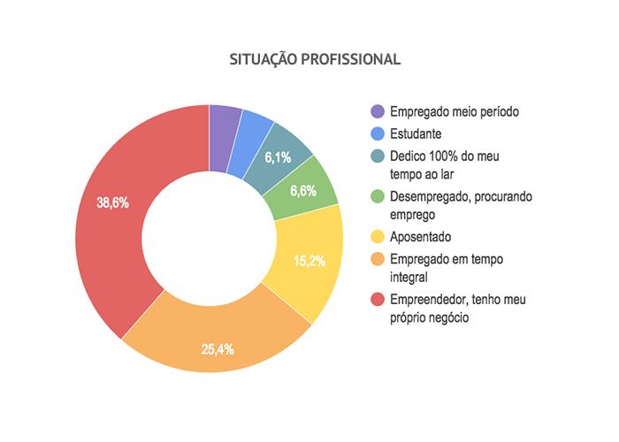 Pesquisa Padeiro Artesanal no Brasil 2016 - Gráfico de situação profissional