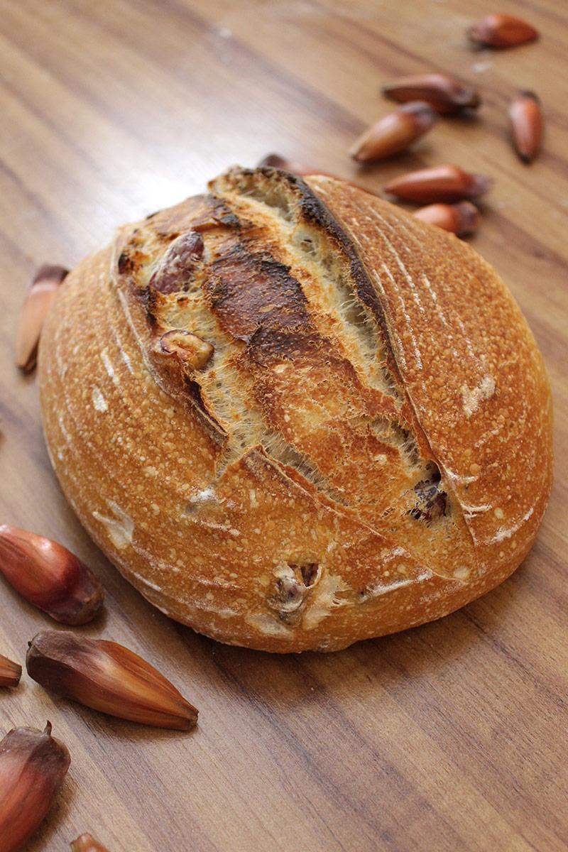 Receita de Pão de Pinhão: Pão assado na vertical