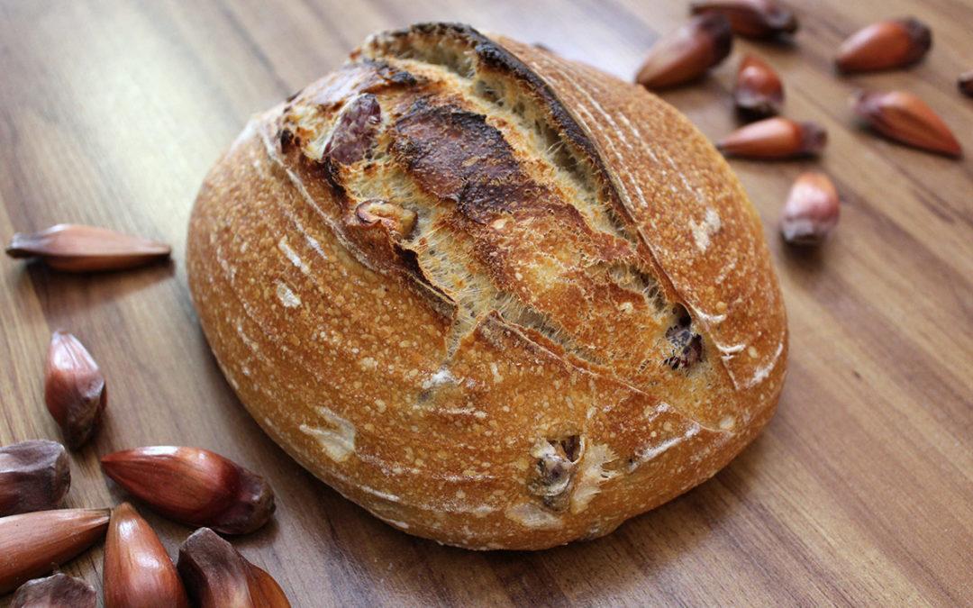 Pão de Pinhão com Fermentação Natural