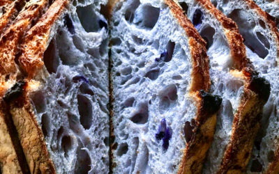 Pão Azul
