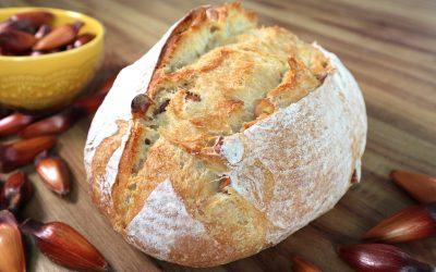 Pão de Pinhão